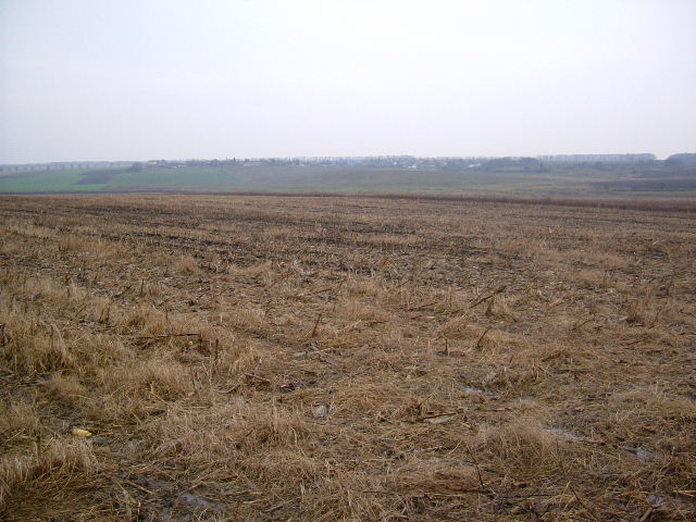 Land in Kotlentsi, Dobrich (Ref: RF138)