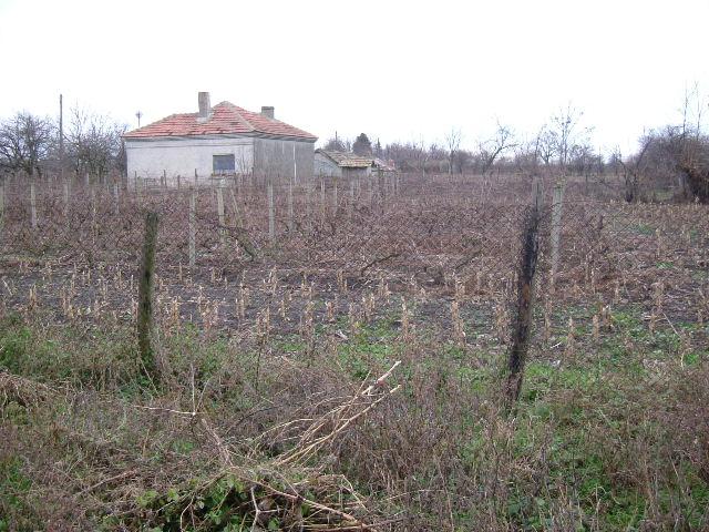 Land in Prespa, Dobrich (Ref: RF139)