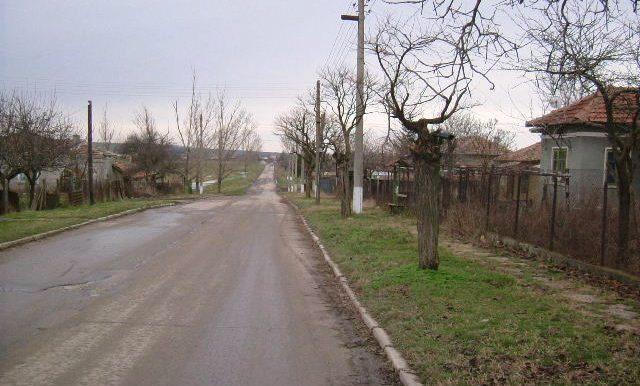 2005_1217(025)