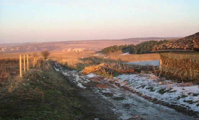 2006_0217(018)