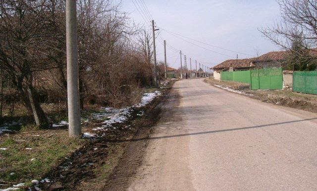 2006_0310(017)