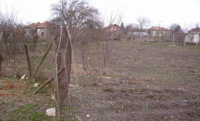 2006_0319(033)