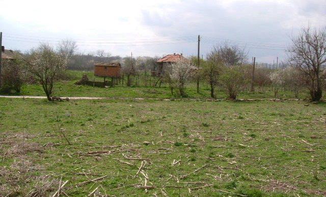 2006_0409(158)