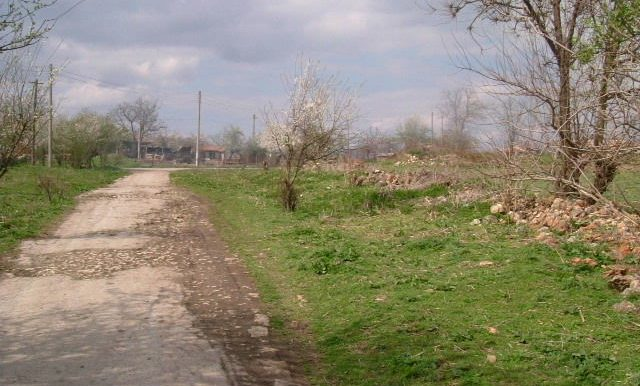 2006_0409(160)