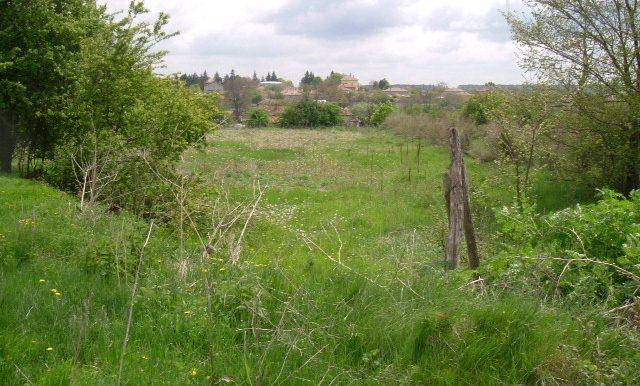 2006_0429(019)