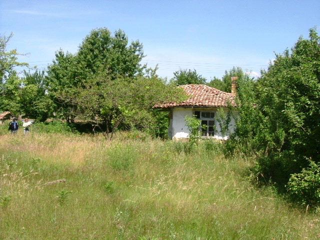 House in Bdintsi, Dobrich (Ref: RF363)