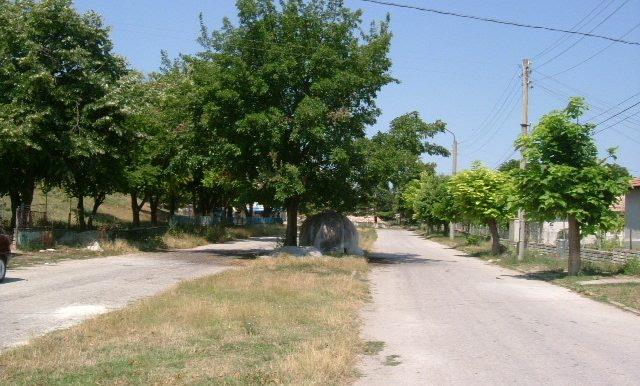 2006_0720(001)