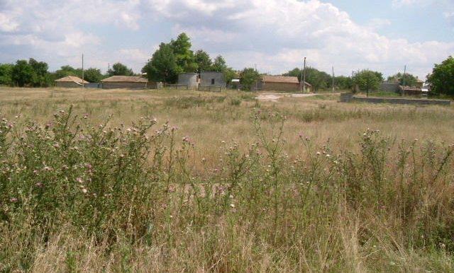 2006_0720(187)