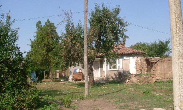 2006_0814(010)