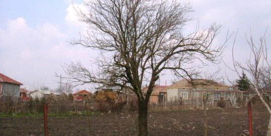Land in Polkovnik Minkovo, Dobrich (Ref: RF266)