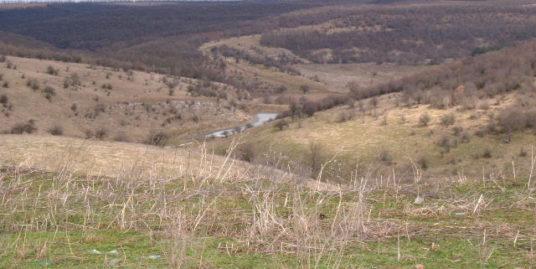 Land in Surnets, Dobrich (Ref: RF286)