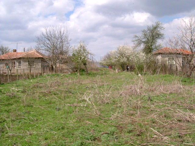 House in Rogozina, Dobrich (Ref: RF306)