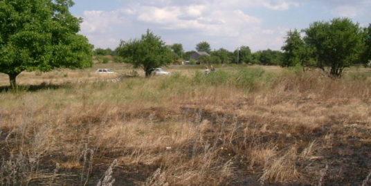 Land in Bdintsi, Dobrich (Ref: RF392)