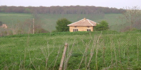House in Benkovski, Dobrich (Ref: RF324)